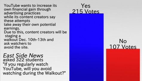 Students register opinion on YouTube walkout